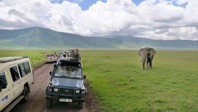Photo of السياحة في تنزانيا 2019
