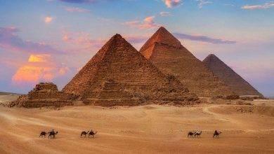 Photo of هل تعلم عن الوطن مصر