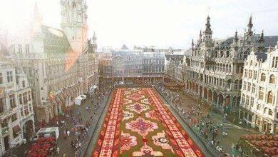 Photo of الجامعات في دولة بلجيكا