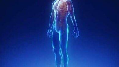 صورة جسم الإنسان و صحته