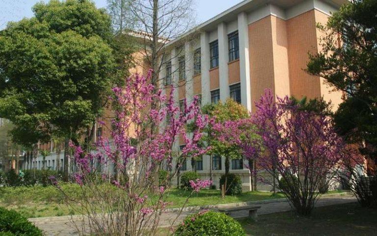 الجامعات في شنغهاي