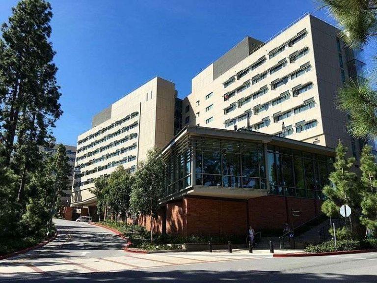 الجامعات في لوس انجلوس