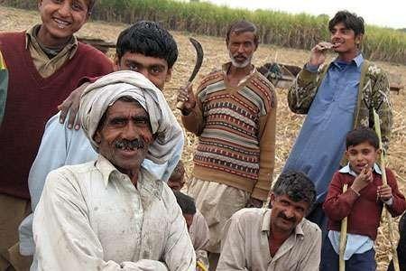 التّركيبة السّكّانيّة في دولة باكستان