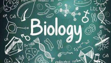 Photo of مقال عن البيولوجيا