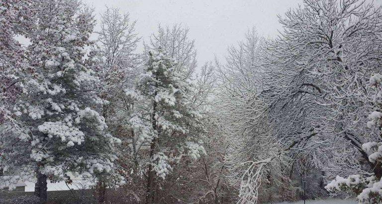 فصل الشتاء في مدينة دورام ولاية نورث كارولينا