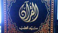 نبذة عن كتاب في ظلال القرآن