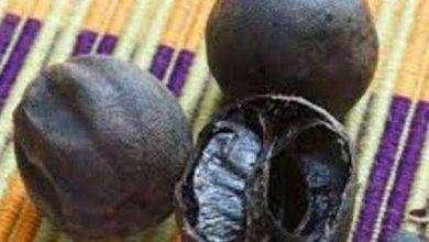 صورة فوائد الليمون الاسود للاستفراغ