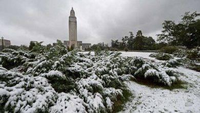 Photo of فصل الشتاء في مدينة باتون روج ولاية لويزيانا