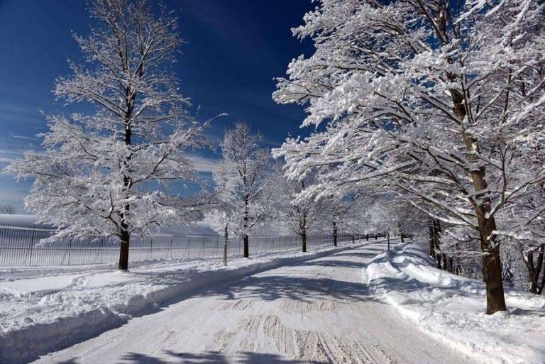 بعض الأنشطة الأخرى المناسبة لفصل الشتاء