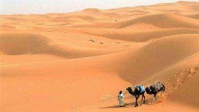 Photo of تاريخ المغرب الكبير