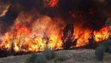 Photo of مقال عن الكوارث الطبيعية