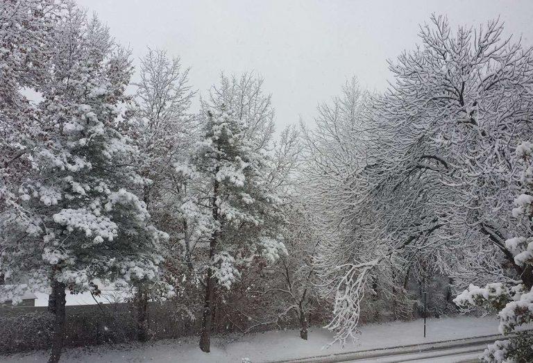 فصل الشتاء في مدينة سينت لويس ولاية ميزوري