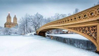 Photo of الشتاء في نيويورك