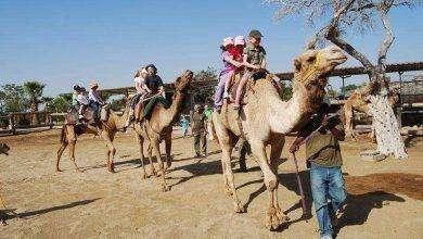 صورة السياحه في قبرص للاطفال
