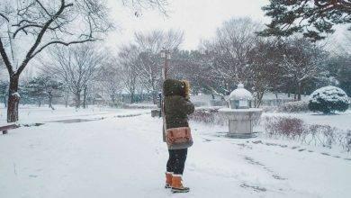 Photo of الشتاء فى سيول .. أبرد وأجمل شتاء فى العالم
