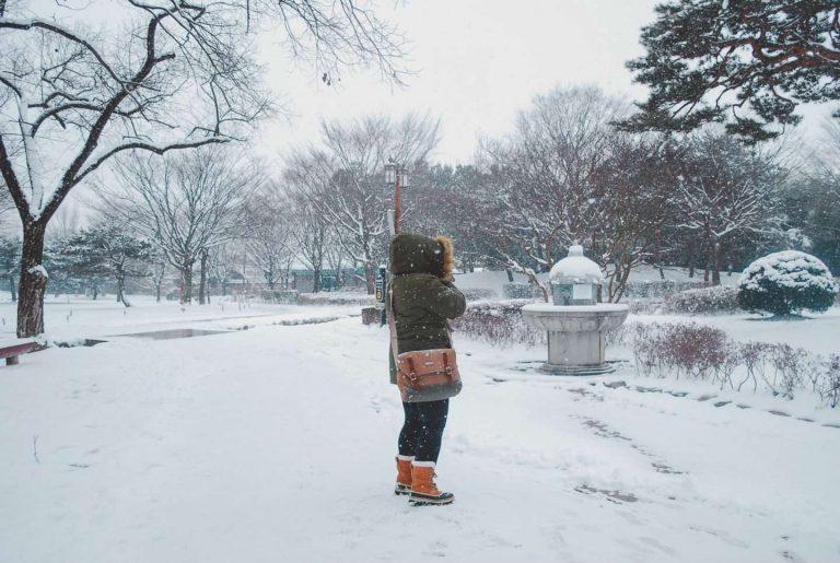 الشتاء فى سيول
