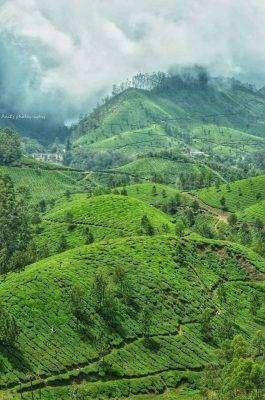 زيارة التلال الخضراء
