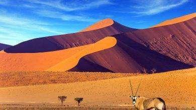 Photo of بماذا تشتهر دولة ناميبيا