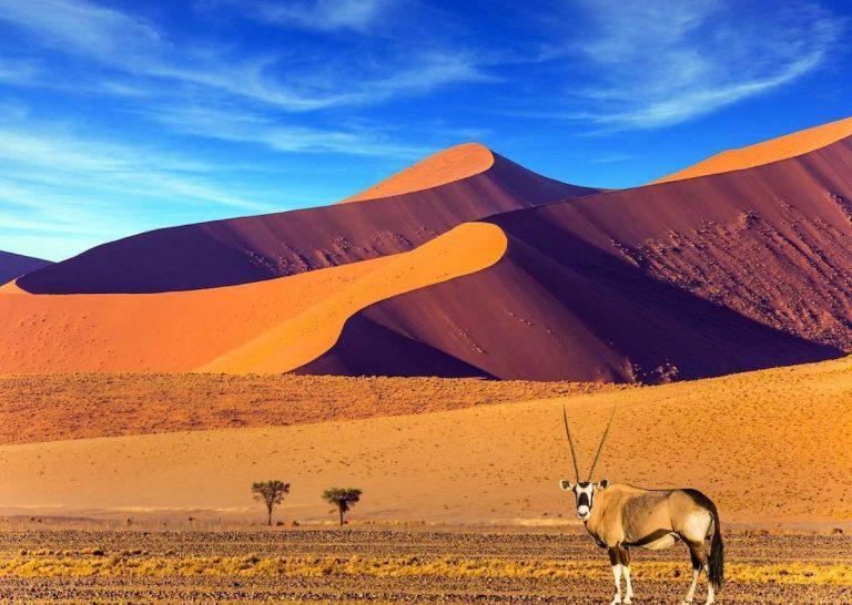 بماذا تشتهر دولة ناميبيا