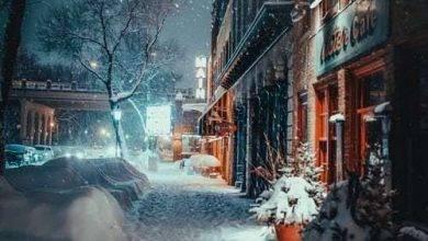 Photo of الشتاء في نيس