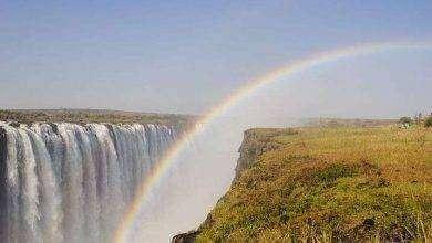 Photo of بماذا تشتهر دولة زيمبابوي