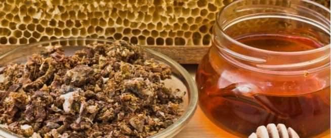 فوائد العكبر مع العسل