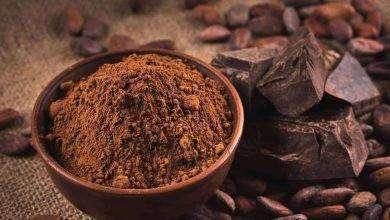 Photo of فوائد مسحوق الكاكاو لكمال الاجسام