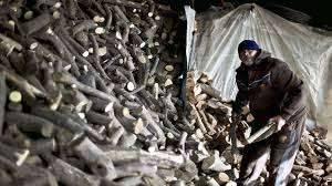 لماذا يعد جمع الحطب وبيعه عملا شريفا