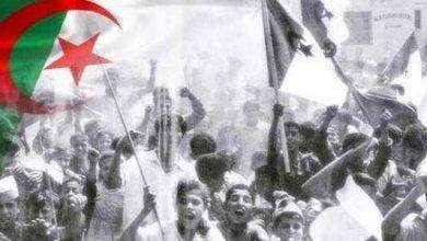 Photo of احداث معركة الجزائر