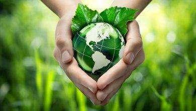 Photo of مقال عن البيئة