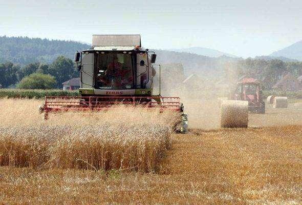 الانتاج الزراعي في سلوفاكيا