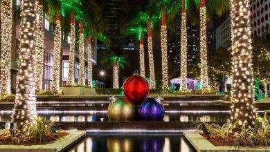 Photo of فصل الشتاء في ولاية فلوريدا الأمريكية