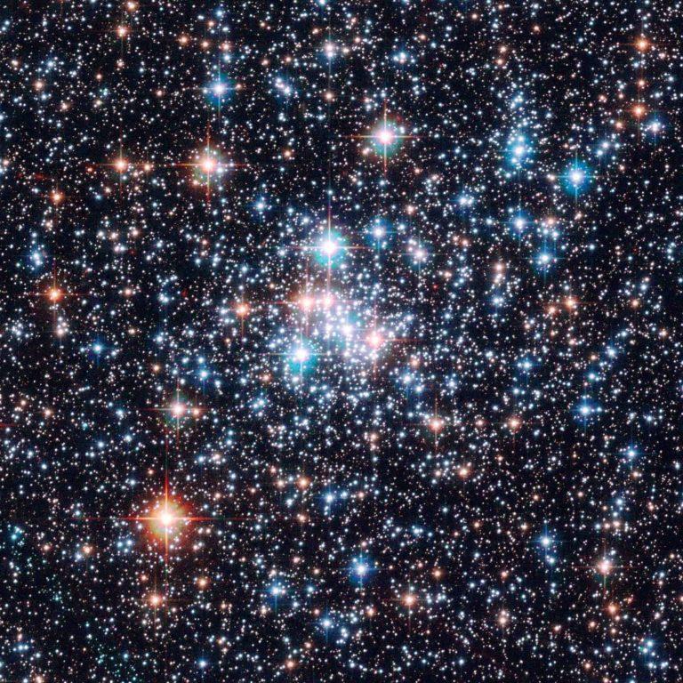 فوائد النجوم لكل الكائنات