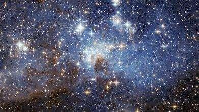 Photo of ما هي فوائد النجوم