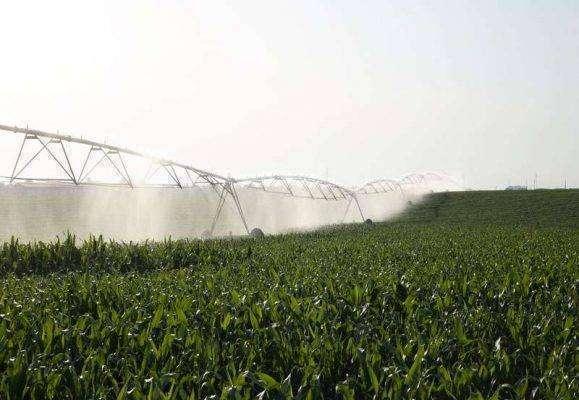 الانتاج الزراعي في صربيا
