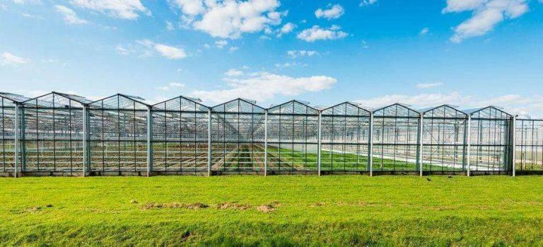 بماذا تشتهر صربيا في الزراعة