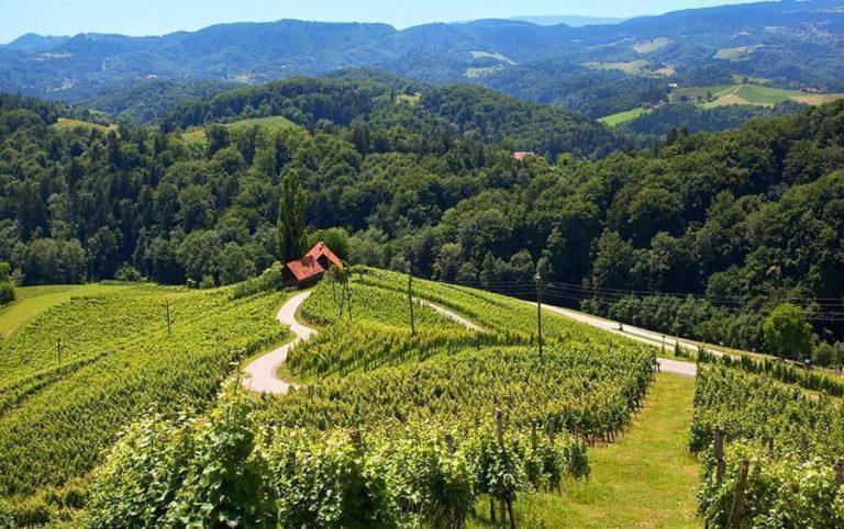 بماذا تشتهر سلوفينيا في الزراعة