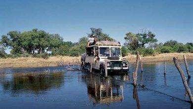 Photo of بماذا تشتهر دولة بوتسوانا