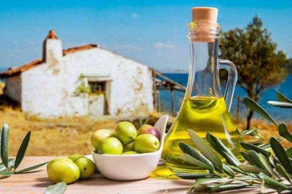 بماذا تشتهر تونس في الزراعة