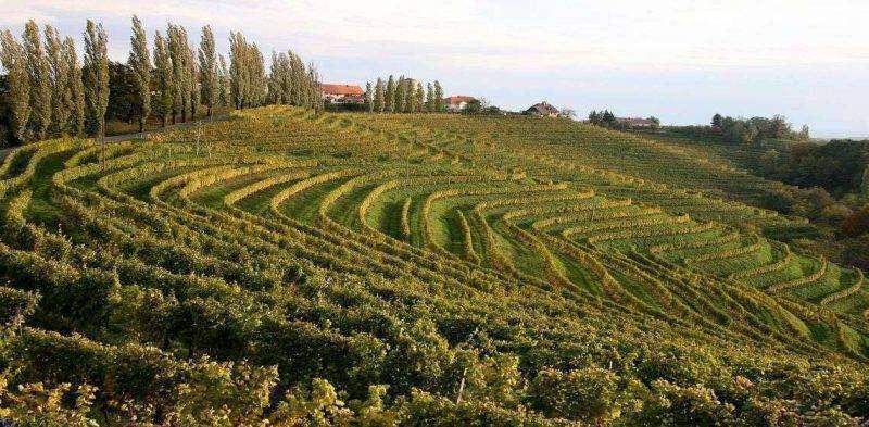 صادرات سلوفينيا الزراعية