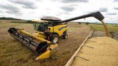 Photo of بماذا تشتهر امريكا في الزراعة