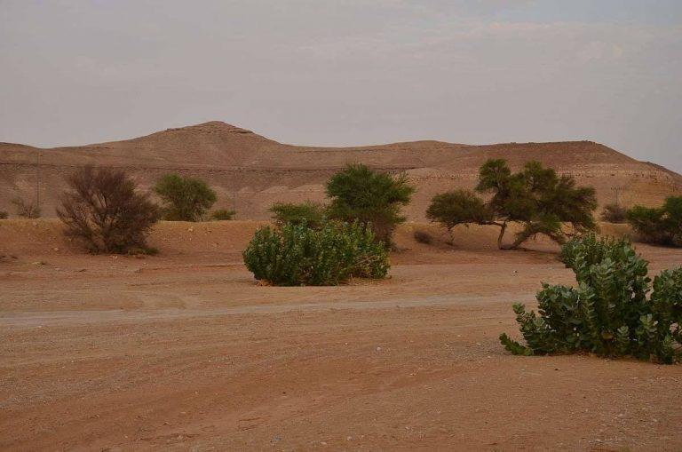 أسباب المناخ الصحراوي في المملكة العربية السعودية
