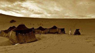 Photo of تاريخ الامارات قبل الميلاد… أبرز المعلومات عن الفترات التّاريخيّة القديمة في الإمارات