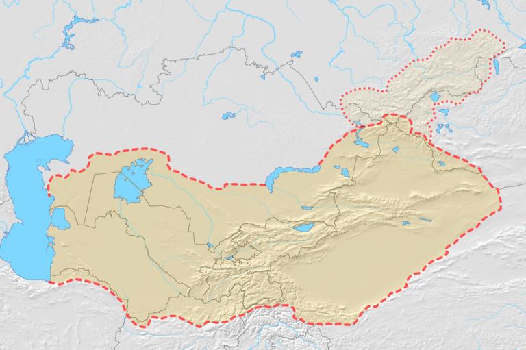 معلومات عن تركستان الغربية