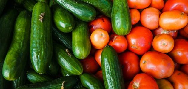 Photo of فوائد الطماطم والخيار