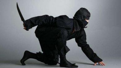 Photo of من هم النينجا