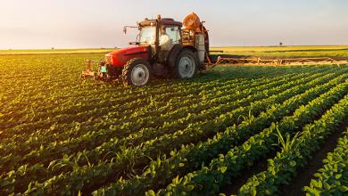 Photo of بماذا تشتهر ولاية نيوهامبشير الأمريكية في الزراعة