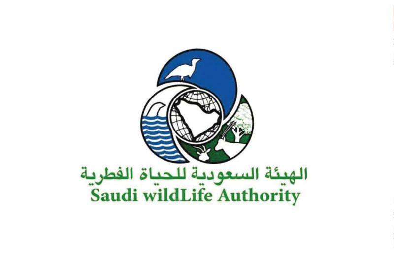تاريخ تأسيس الهيئة السعودية للحياة الفطرية