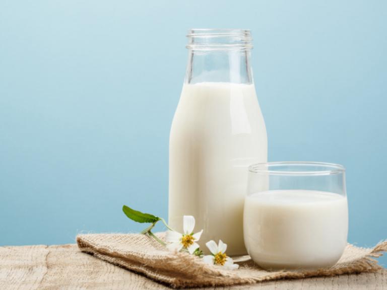 فوائد حليب البقر كامل الدسم