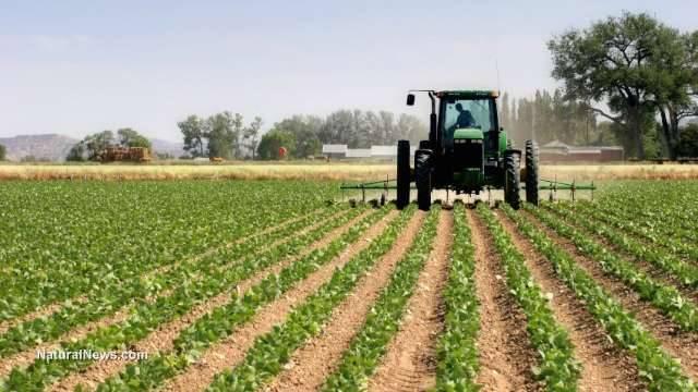 قطاع الزراعة في لاتفيا